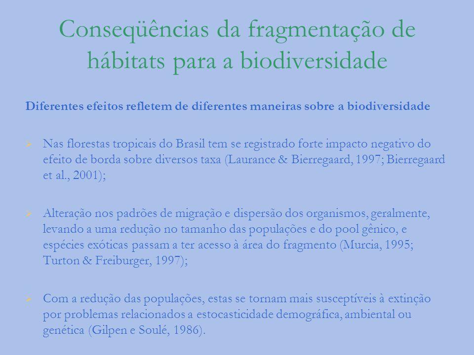 Conseqüências da fragmentação de hábitats para a biodiversidade Diferentes efeitos refletem de diferentes maneiras sobre a biodiversidade Nas floresta