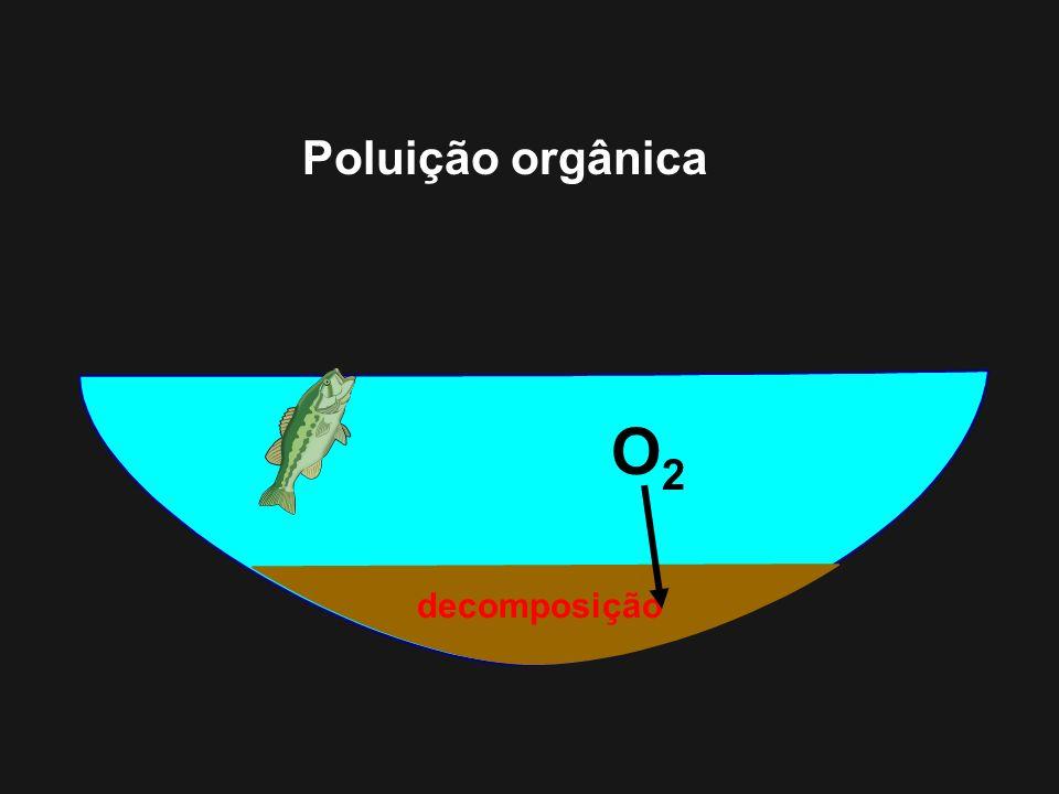 decomposição O2O2 Poluição orgânica