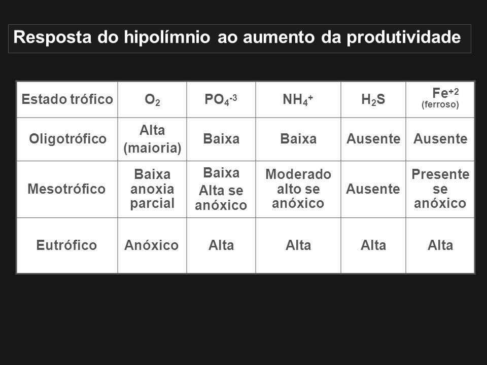 Resposta do hipolímnio ao aumento da produtividade Estado tróficoO2O2 PO 4 -3 NH 4 + H2SH2S Fe +2 (ferroso) Oligotrófico Alta (maioria) Baixa Ausente
