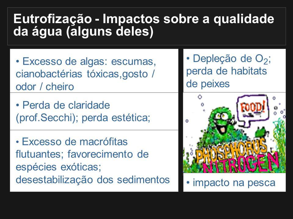 Excesso de algas: escumas, cianobactérias tóxicas,gosto / odor / cheiro Excesso de macrófitas flutuantes; favorecimento de espécies exóticas; desestab