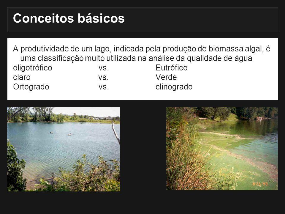 We have already talked about Conceitos básicos A produtividade de um lago, indicada pela produção de biomassa algal, é uma classificação muito utiliza