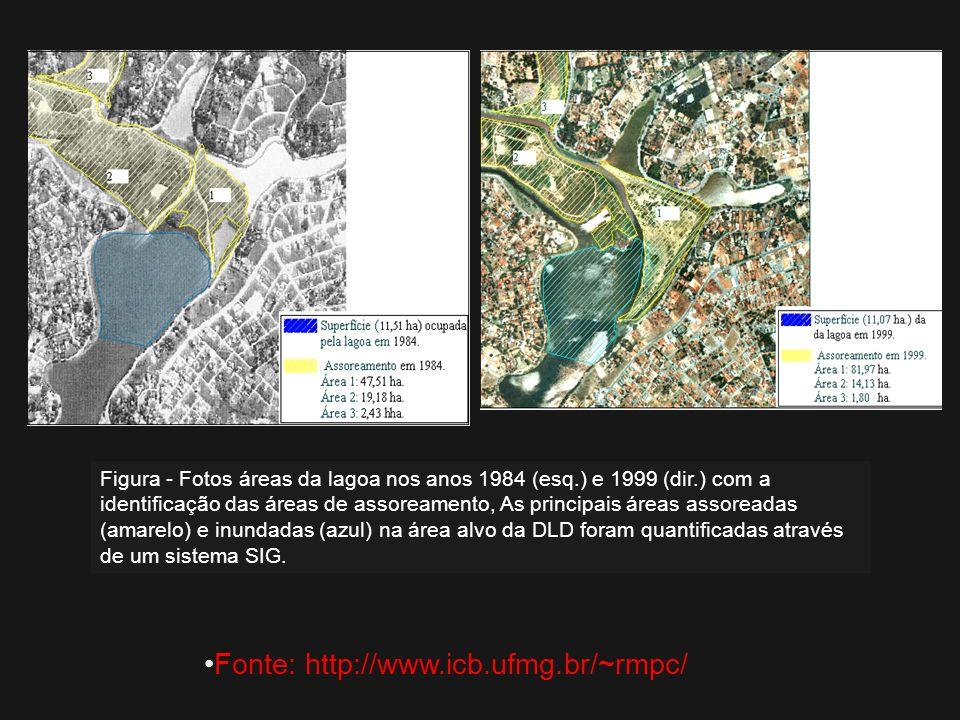 Figura - Fotos áreas da lagoa nos anos 1984 (esq.) e 1999 (dir.) com a identificação das áreas de assoreamento, As principais áreas assoreadas (amarel