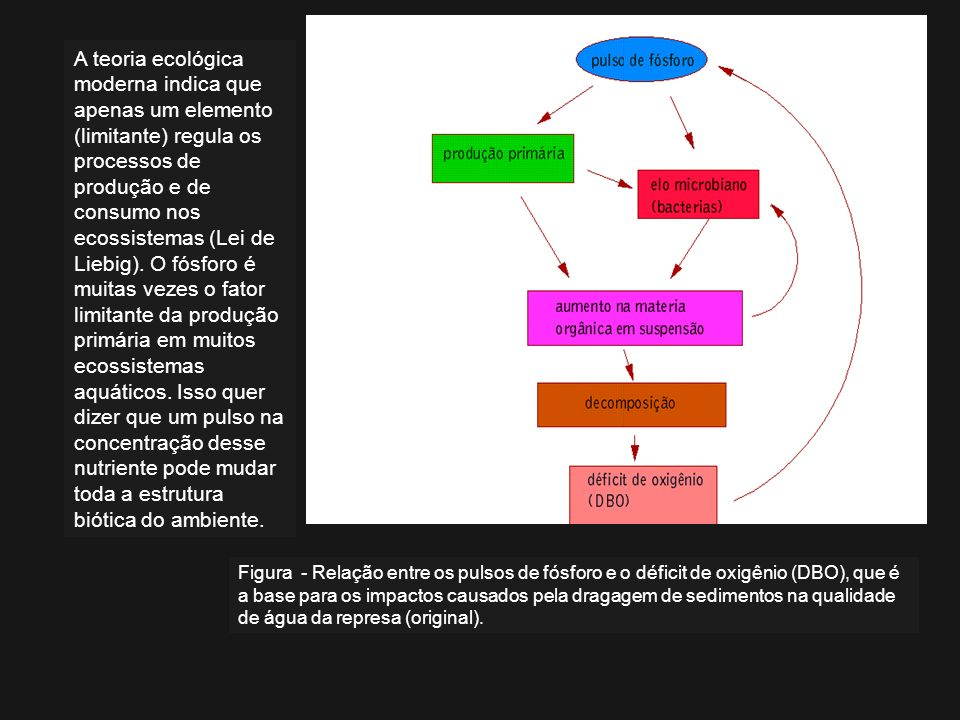 Figura - Relação entre os pulsos de fósforo e o déficit de oxigênio (DBO), que é a base para os impactos causados pela dragagem de sedimentos na quali
