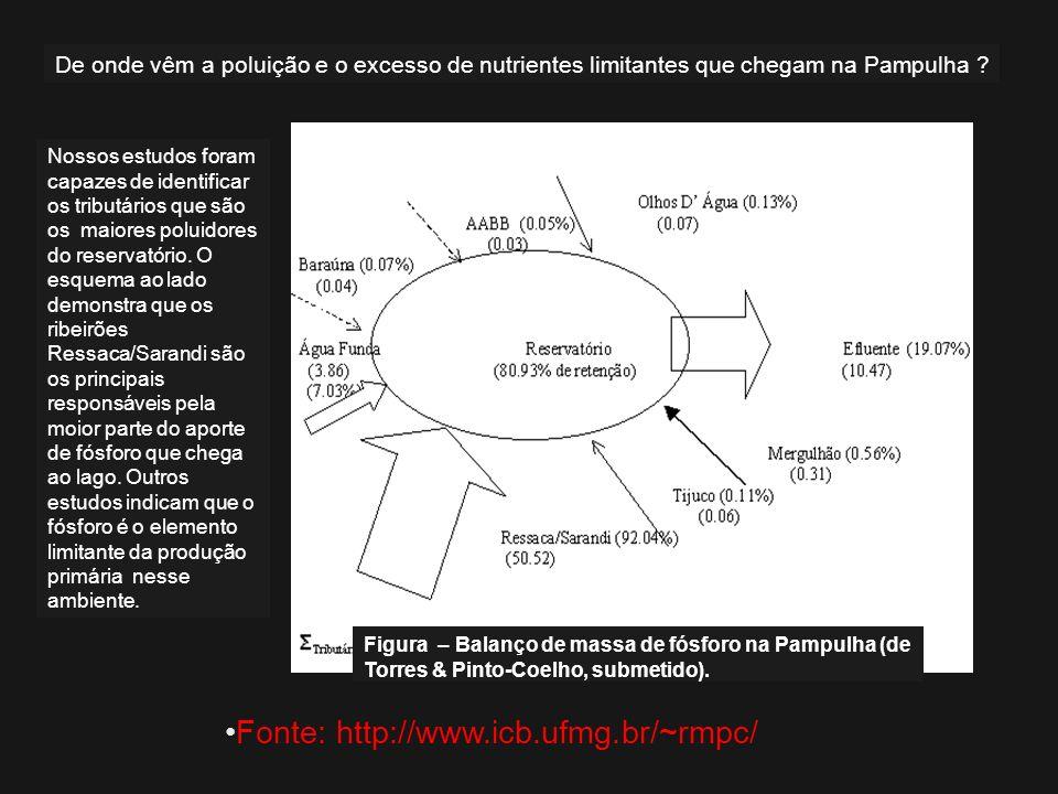 Figura – Balanço de massa de fósforo na Pampulha (de Torres & Pinto-Coelho, submetido). Nossos estudos foram capazes de identificar os tributários que
