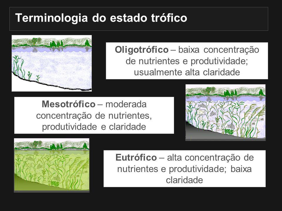 Terminologia do estado trófico Oligotrófico – baixa concentração de nutrientes e produtividade; usualmente alta claridade Mesotrófico – moderada conce