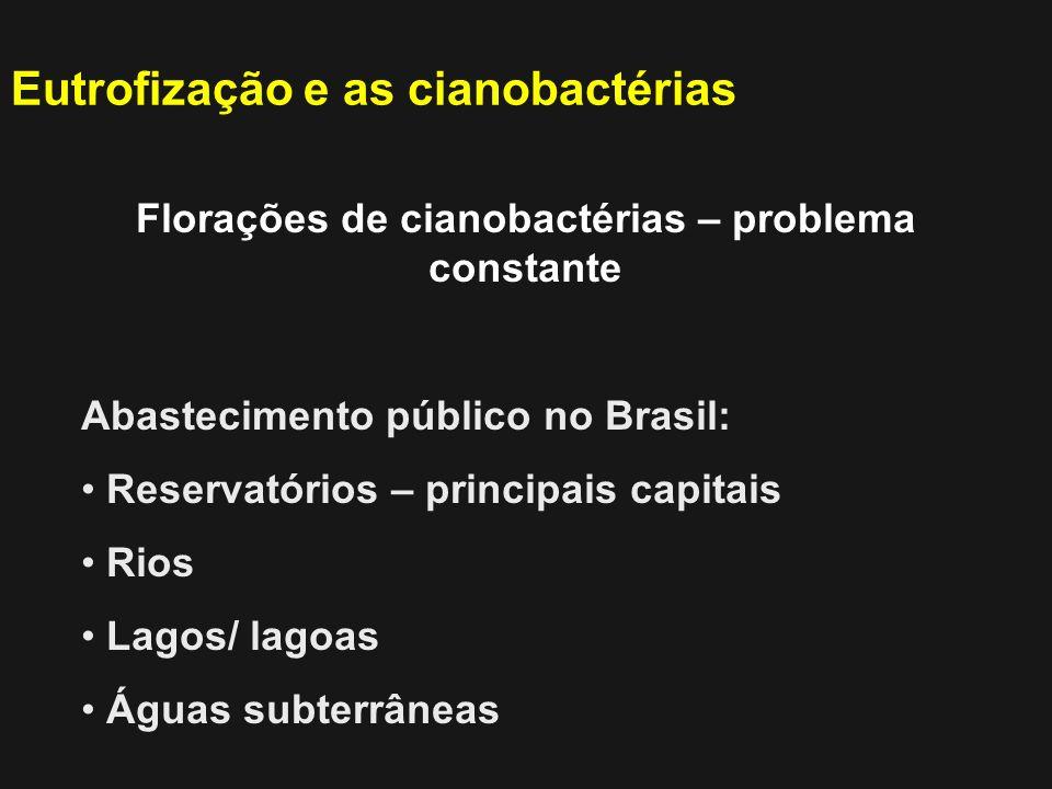 Florações de cianobactérias – problema constante Abastecimento público no Brasil: Reservatórios – principais capitais Rios Lagos/ lagoas Águas subterr