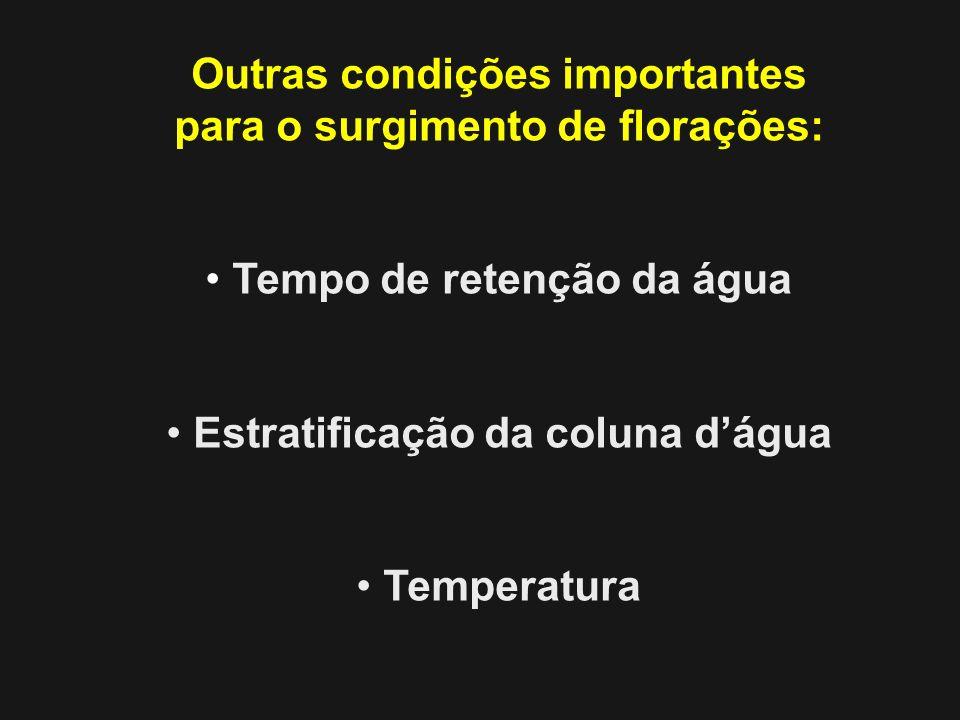 Outras condições importantes para o surgimento de florações: Tempo de retenção da água Estratificação da coluna dágua Temperatura
