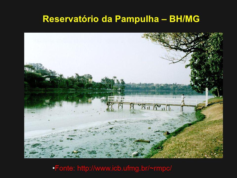 Reservatório da Pampulha – BH/MG Fonte: http://www.icb.ufmg.br/~rmpc/
