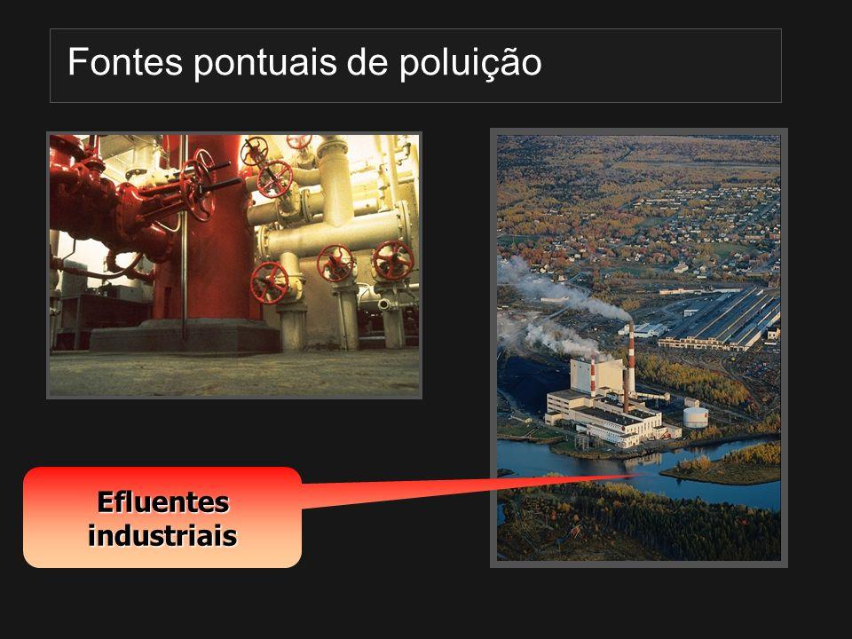 Efluentes industriais Fontes pontuais de poluição