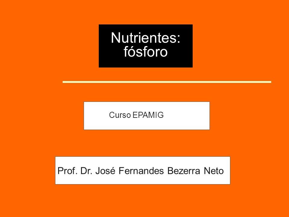 Nutrientes: fósforo Curso EPAMIG Prof. Dr. José Fernandes Bezerra Neto
