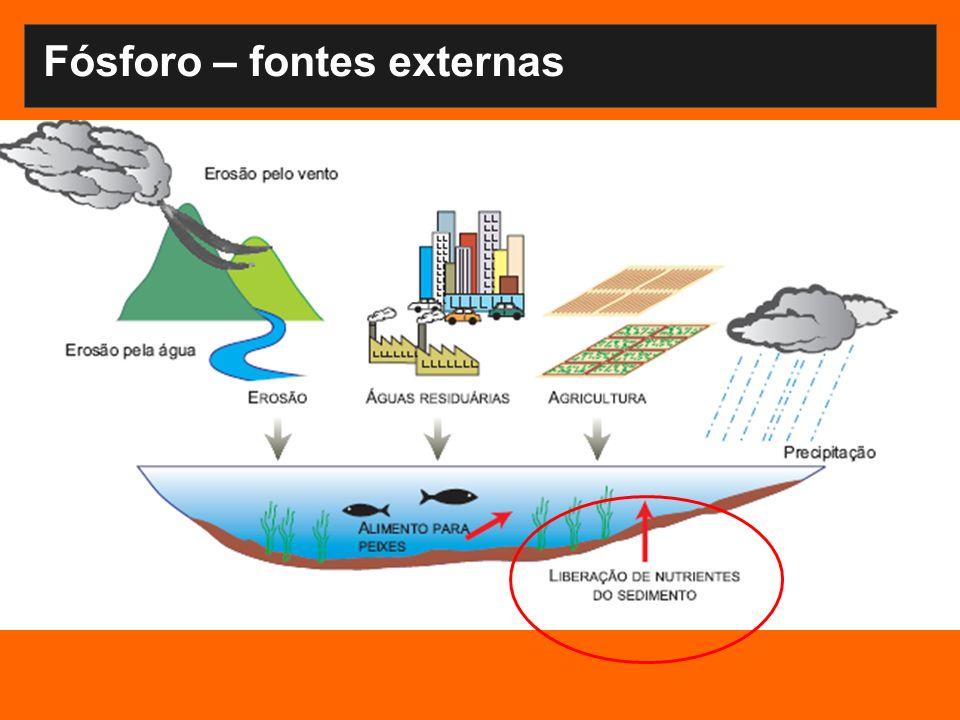 Fósforo – fontes externas Fontes difusas Descargas da bacia de drenagem via tributários Deposição atmosférica Fontes pontuais Esgoto doméstico Descargas industriais