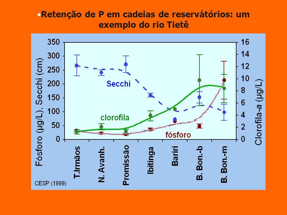 Retenção de P em cadeias de reservátórios: um exemplo do rio Tietê