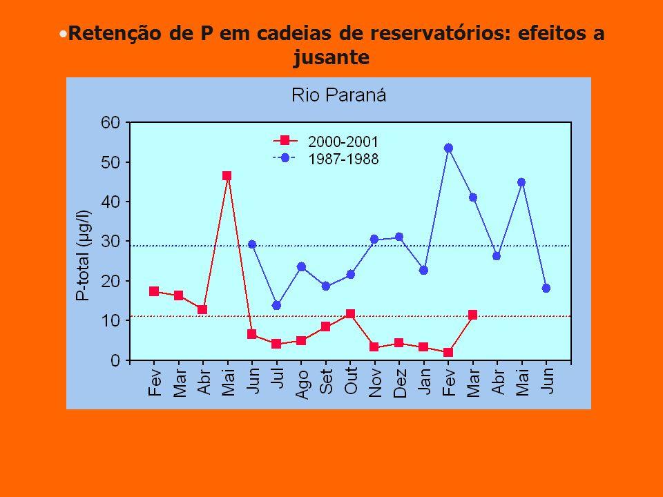 Retenção de P em cadeias de reservatórios: efeitos a jusante