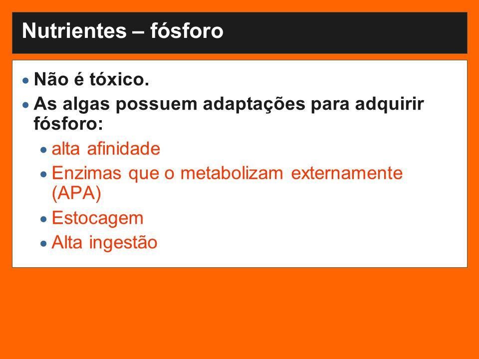 Nutrientes – fósforo Não é tóxico.