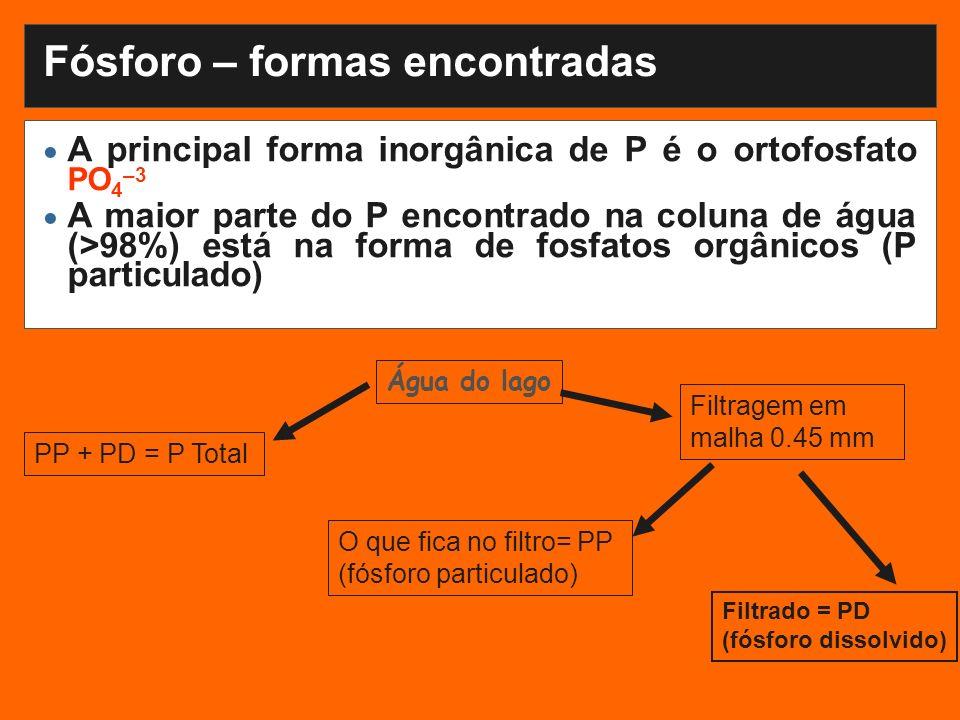 A principal forma inorgânica de P é o ortofosfato PO 4 –3 A maior parte do P encontrado na coluna de água (>98%) está na forma de fosfatos orgânicos (P particulado) Fósforo – formas encontradas PP + PD = P Total Filtragem em malha 0.45 mm O que fica no filtro= PP (fósforo particulado) Filtrado = PD (fósforo dissolvido) Água do lago