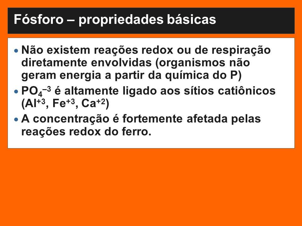 Fósforo – propriedades básicas Não existem reações redox ou de respiração diretamente envolvidas (organismos não geram energia a partir da química do P) PO 4 –3 é altamente ligado aos sítios catiônicos (Al +3, Fe +3, Ca +2 ) A concentração é fortemente afetada pelas reações redox do ferro.