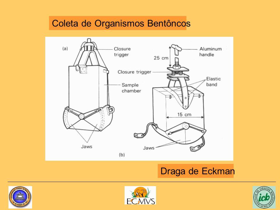 Coleta de Organismos Bentôncos Draga de Eckman