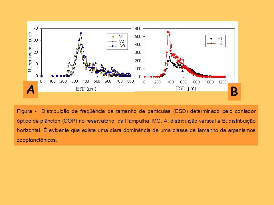 Figura - Distribuição de freqüência de tamanho de partículas (ESD) determinado pelo contador óptico de plâncton (COP) no reservatório da Pampulha, MG.