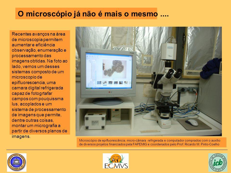 Recentes avanços na área de microscopia permitem aumentar e eficiência observação, enumeração e processamento das imagens obtidas. Na foto ao lado, ve