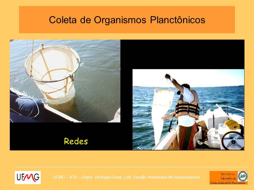 UFMG – ICB – Depto. Biologia Geral, Lab. Gestão Ambiental de Reservatórios Coleta de Organismos Planctônicos Redes