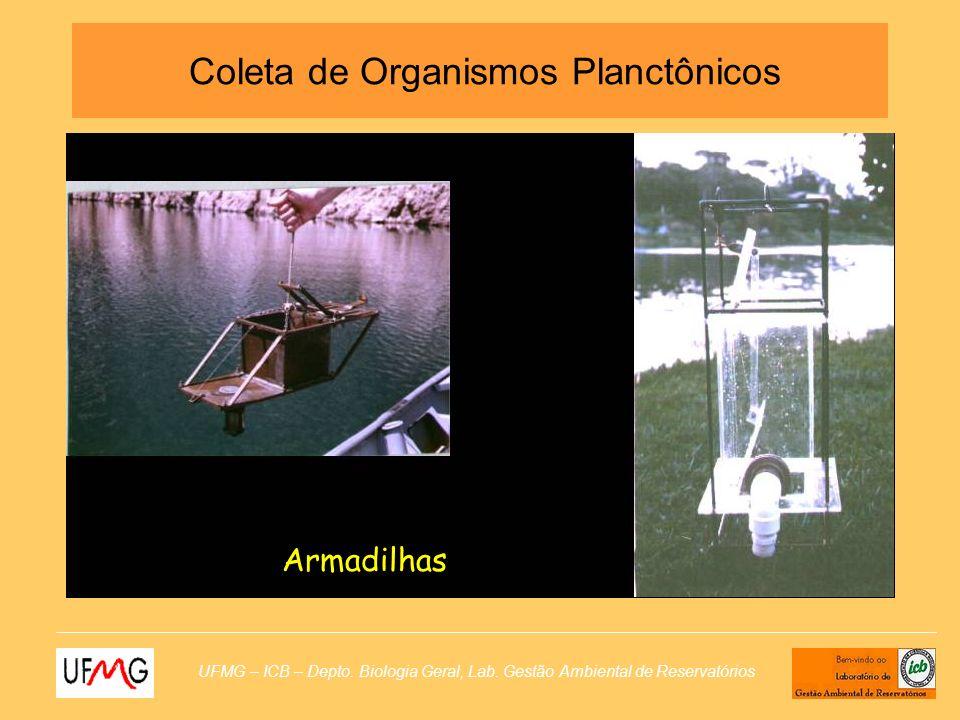 UFMG – ICB – Depto. Biologia Geral, Lab. Gestão Ambiental de Reservatórios Armadilhas Coleta de Organismos Planctônicos