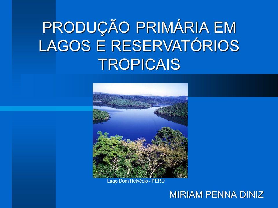Lagos de regiões TROPICAIS: -Fatores limitantes são: radiação subaquática e nutrientes, especialmente fosfato, amônia e nitrato.