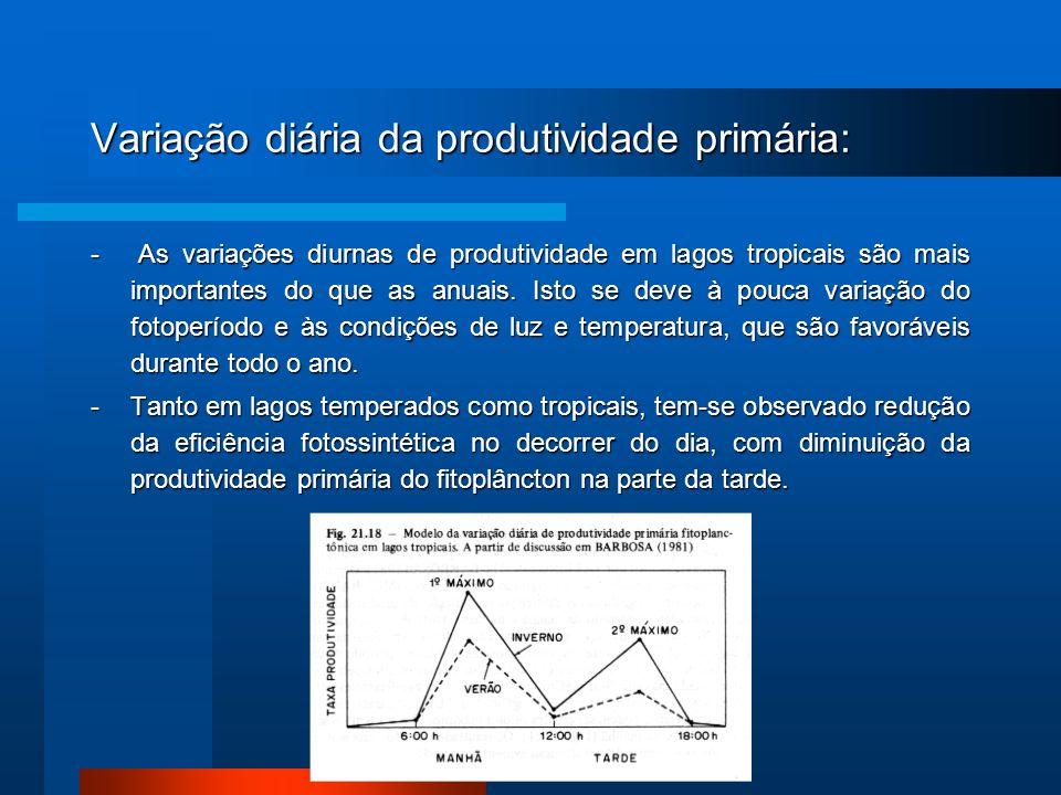 Variação diária da produtividade primária: - As variações diurnas de produtividade em lagos tropicais são mais importantes do que as anuais. Isto se d