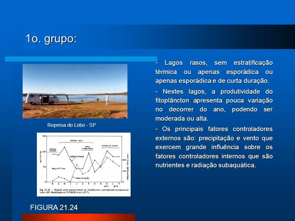 1o. grupo: - Lagos rasos, sem estratificação térmica ou apenas esporádica ou apenas esporádica e de curta duração. - Nestes lagos, a produtividade do