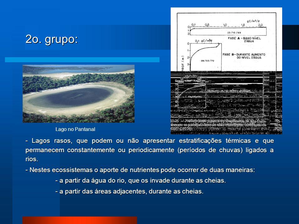 2o. grupo: - Lagos rasos, que podem ou não apresentar estratificações térmicas e que permanecem constantemente ou periodicamente (períodos de chuvas)