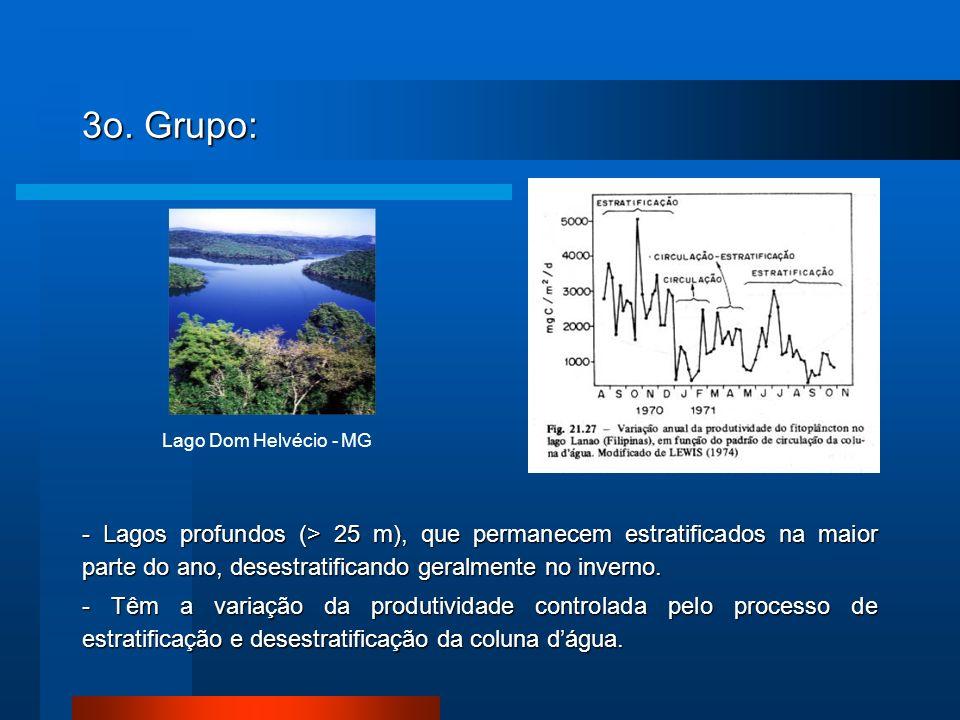 3o. Grupo: - Lagos profundos (> 25 m), que permanecem estratificados na maior parte do ano, desestratificando geralmente no inverno. - Têm a variação