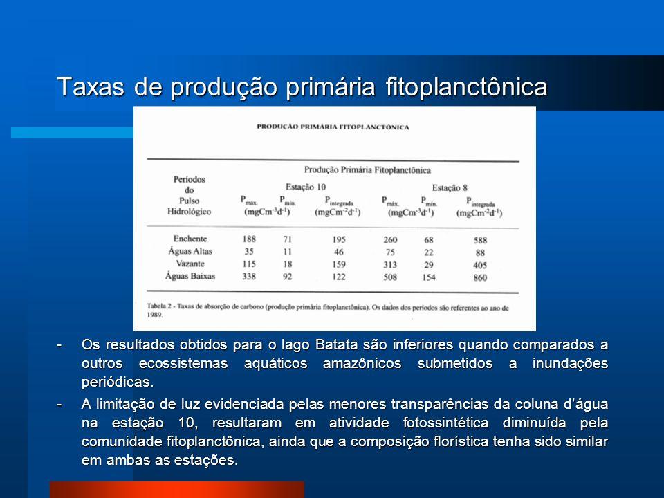 Taxas de produção primária fitoplanctônica -Os resultados obtidos para o lago Batata são inferiores quando comparados a outros ecossistemas aquáticos