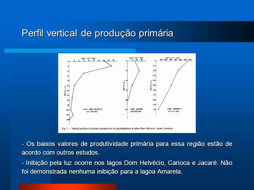 Perfil vertical de produção primária - Os baixos valores de produtividade primária para essa região estão de acordo com outros estudos. - Inibição pel