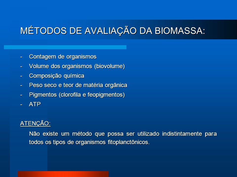 MÉTODOS DE AVALIAÇÃO DA BIOMASSA: -Contagem de organismos -Volume dos organismos (biovolume) -Composição química -Peso seco e teor de matéria orgânica