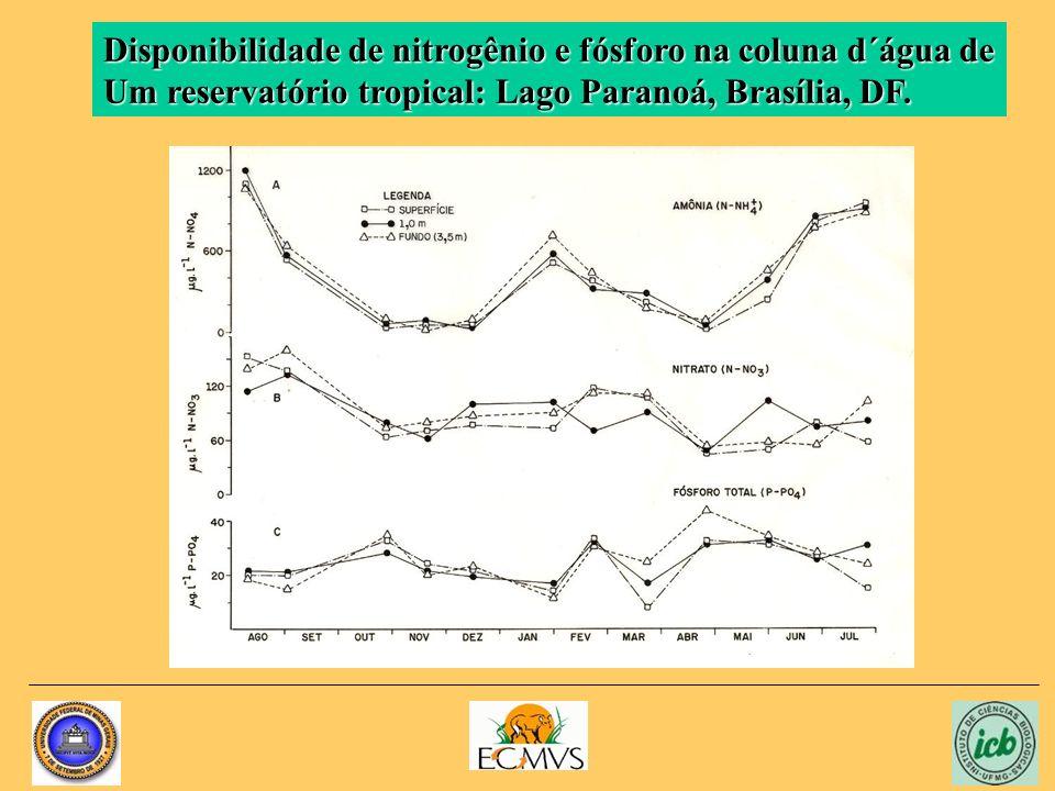 Disponibilidade de nitrogênio e fósforo na coluna d´água de Um reservatório tropical: Lago Paranoá, Brasília, DF.