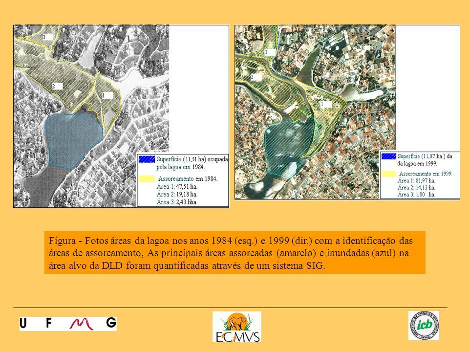 Figura - Fotos áreas da lagoa nos anos 1984 (esq.) e 1999 (dir.) com a identificação das áreas de assoreamento, As principais áreas assoreadas (amarelo) e inundadas (azul) na área alvo da DLD foram quantificadas através de um sistema SIG.