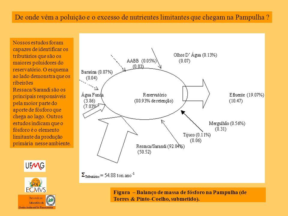 Figura – Balanço de massa de fósforo na Pampulha (de Torres & Pinto-Coelho, submetido).