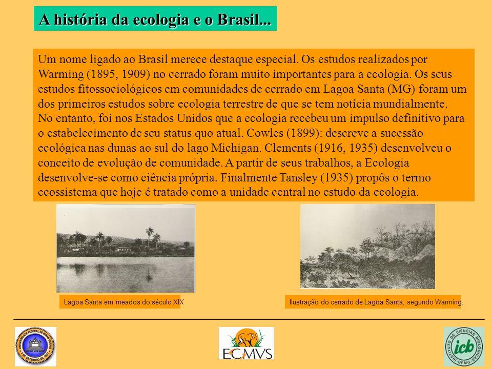 Um nome ligado ao Brasil merece destaque especial.