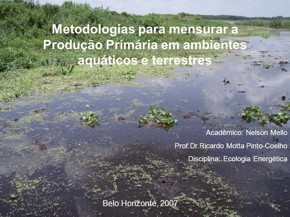 Metodologias para mensurar a Produção Primária em ambientes aquáticos e terrestres Acadêmico: Nelson Mello Prof.Dr.Ricardo Motta Pinto-Coelho Discipli