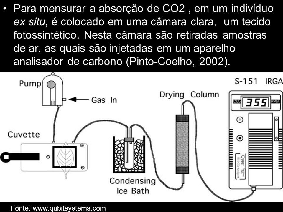 Para mensurar a absorção de CO2, em um indivíduo ex situ, é colocado em uma câmara clara, um tecido fotossintético. Nesta câmara são retiradas amostra
