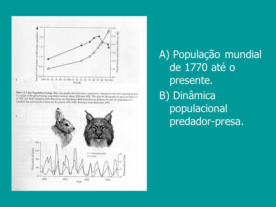 A) População mundial de 1770 até o presente. B) Dinâmica populacional predador-presa.