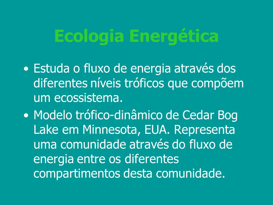 Ecologia Energética Estuda o fluxo de energia através dos diferentes níveis tróficos que compõem um ecossistema. Modelo trófico-dinâmico de Cedar Bog