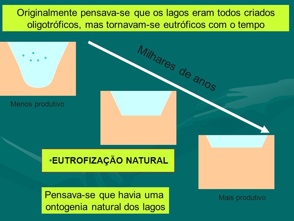 Eutrofização – Excesso de nutrientes e de matéria orgânica (fertilizantes) levando a um excessivo crescimento algal e a uma incapacidade do sistema em processar (circular) toda a biomassa gerada nesse processo (desequilíbrio).