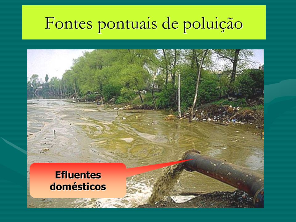 Prof. 5 m & secchi >5 m Transparência da água – claro vs turvo