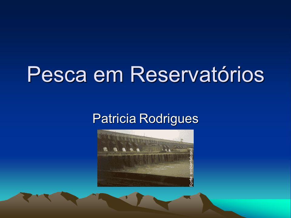 Pesca em Reservatórios Patricia Rodrigues
