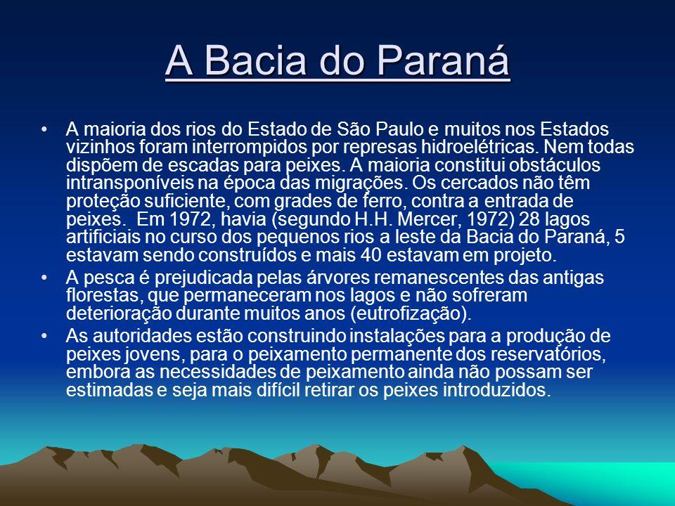 A Bacia do Paraná A maioria dos rios do Estado de São Paulo e muitos nos Estados vizinhos foram interrompidos por represas hidroelétricas. Nem todas d