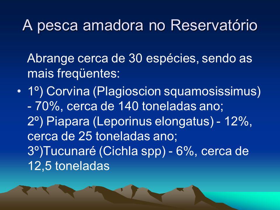 A pesca amadora no Reservatório Abrange cerca de 30 espécies, sendo as mais freqüentes: 1º) Corvina (Plagioscion squamosissimus) - 70%, cerca de 140 t