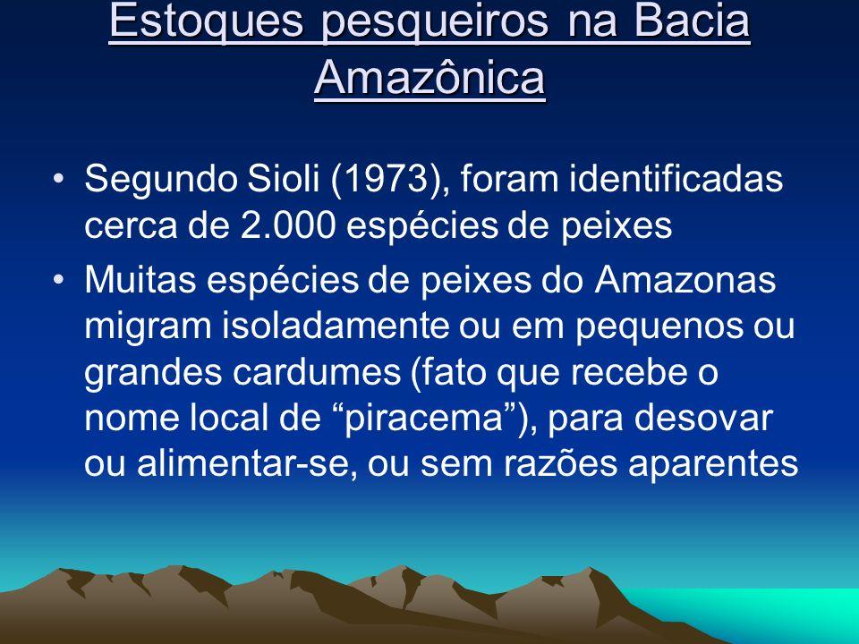 Estoques pesqueiros na Bacia Amazônica Segundo Sioli (1973), foram identificadas cerca de 2.000 espécies de peixes Muitas espécies de peixes do Amazon
