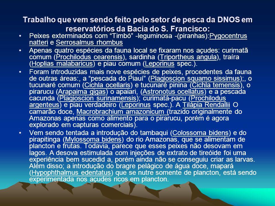 Trabalho que vem sendo feito pelo setor de pesca da DNOS em reservatórios da Bacia do S. Francisco: Peixes exterminados com Timbó -leguminosa -(piranh