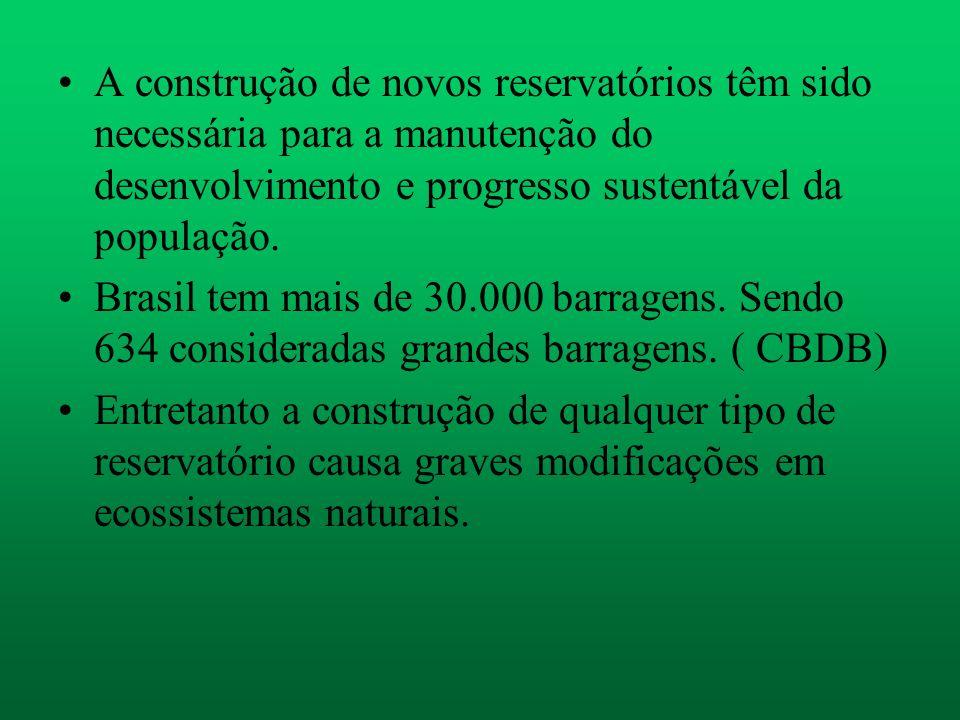 A construção de novos reservatórios têm sido necessária para a manutenção do desenvolvimento e progresso sustentável da população. Brasil tem mais de