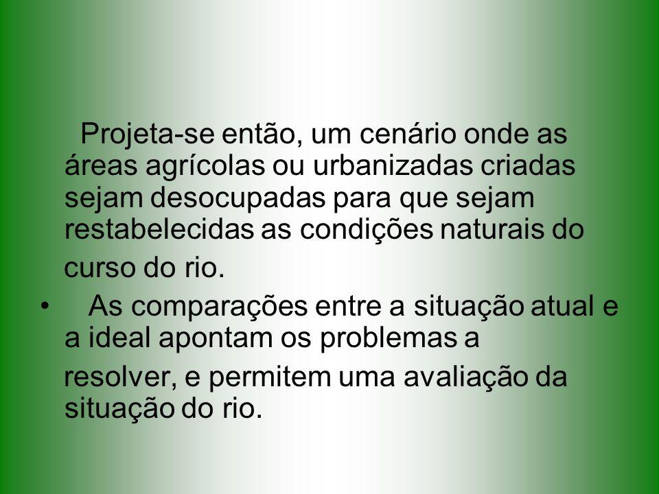 Projeta-se então, um cenário onde as áreas agrícolas ou urbanizadas criadas sejam desocupadas para que sejam restabelecidas as condições naturais do c